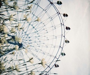 blue, ferris wheel, and flowers image