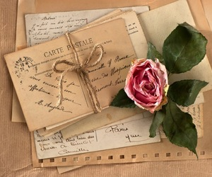 rose, vintage, and letters image