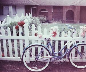 vintage, beautiful, and bike image