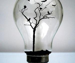 bird, tree, and light image