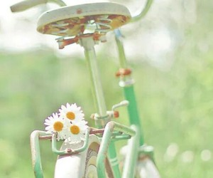 green, bicycle, and bike image