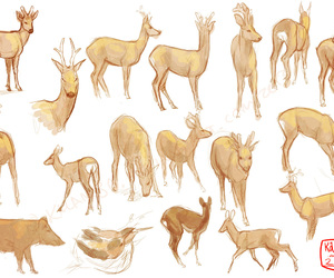 deer, draw, and help image