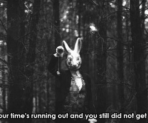 time, rabbit, and quote image