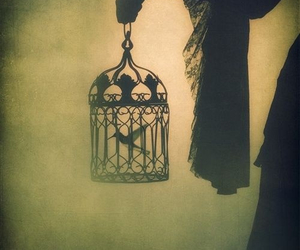 bird, cage, and art image