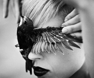 bird, face, and black and white image