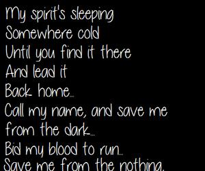 blood, dark, and evanescence image