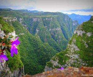 amazing, brasil, and nature image