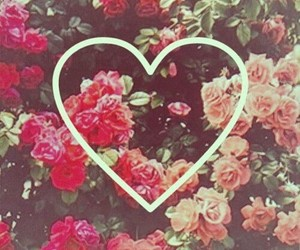 heart, flowers, and rose image