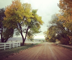 autumn, fall, and ranch image