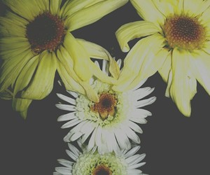 flower child, flowers, and hipster image
