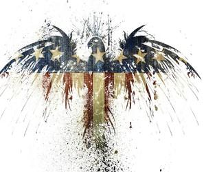 america, eagle, and United States of America image