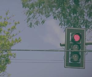 :p, street, and tree image