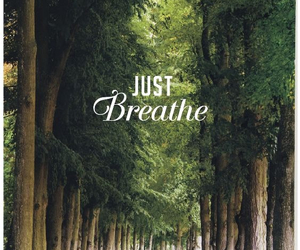 breathe, tree, and quotes image