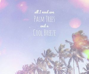 summer, palm trees, and breeze image
