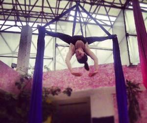 danzaaerea danza aerea image
