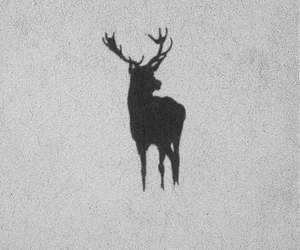 antlers, art, and black and white image