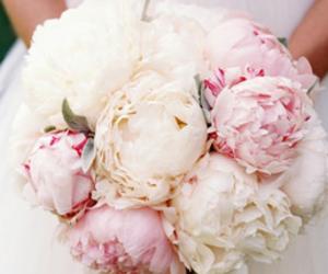 blush, bouquet, and bride image