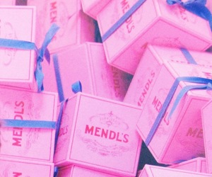 box, pink, and blue image