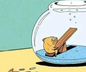 fish and funny image