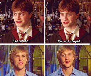harry potter, daniel radcliffe, and funny image