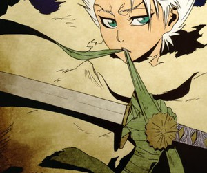 bleach, anime, and toshiro image