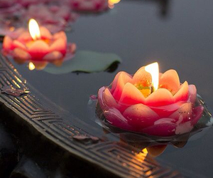 candles, indian, and water lily image