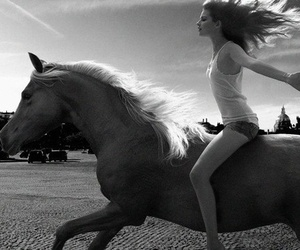 horse, girl, and free image