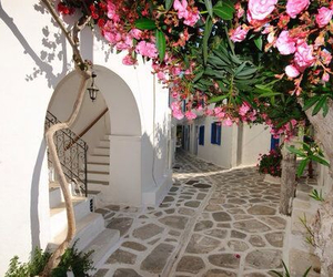 flowers, greek, and street image