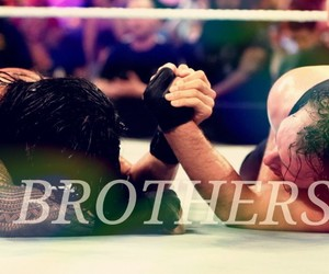brothers, wwe, and the shield image