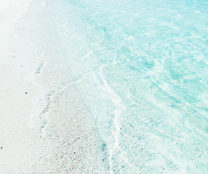 beach, water, and summer image