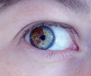 amazing, green eye, and heterochromia image