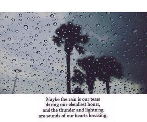 grunge, quote, and palm trees image