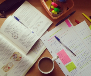 school, book, and study image