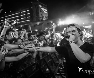 fans, hardwell, and love image