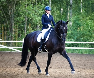 black, boots, and dressage image