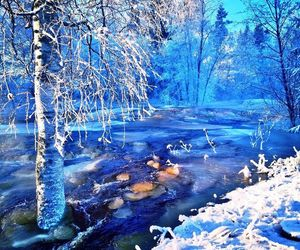 beautiful, blue, and cold image