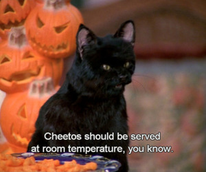 salem, funny, and sabrina the teenage witch image