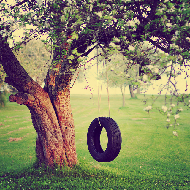 The Old Tire Swing Discovered By Theroad Ofpics