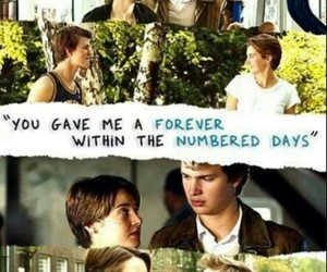 couple, the fault in our stars, and quotes image