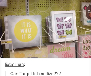 butterfly, louis, and target image