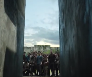maze, the maze runner, and dylan o'brien image
