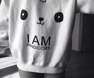 pandicorn and pandacorn image