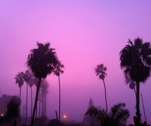 purple, sky, and pink image