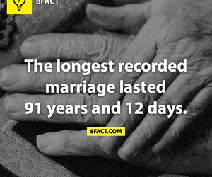 fact, facts, and 8fact image
