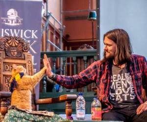 cat, high five, and james bowen image