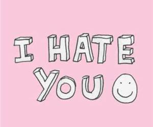 hate, pink, and i hate you image