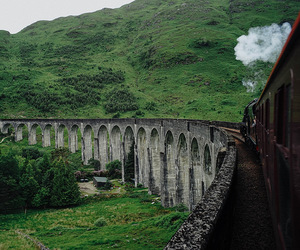 bridge, green, and harry potter image