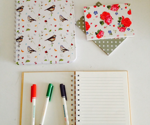birds, book, and floral image