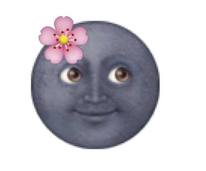 emoji, flowers, and moon image