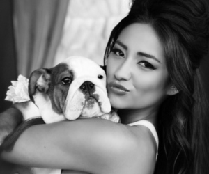 shay mitchell, pretty little liars, and dog image